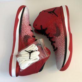 Air Jordan XXXI Chicago